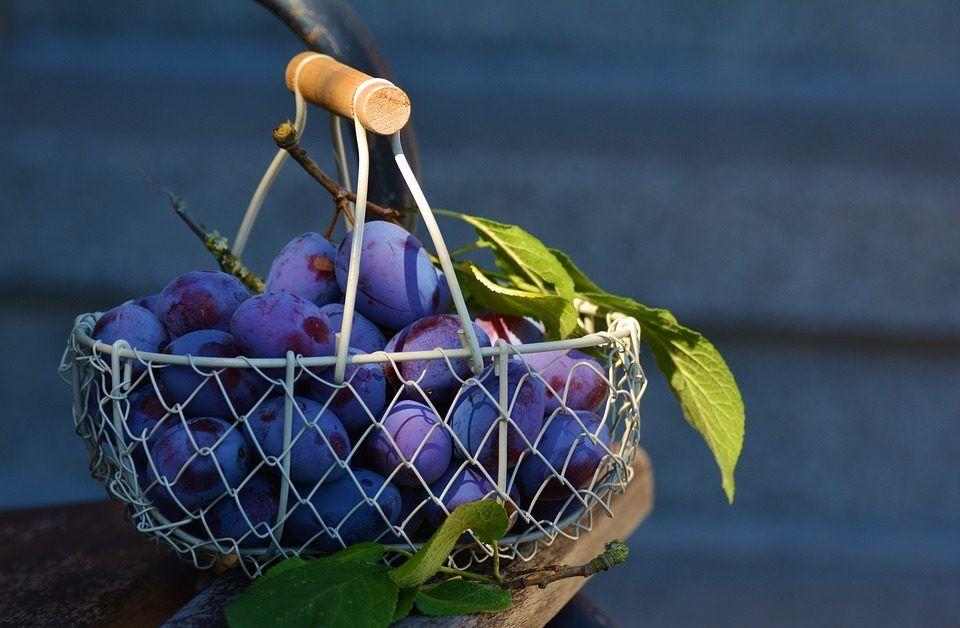 Recupera tu cuerpo con la fruta